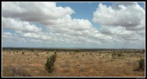 Kenya-0281