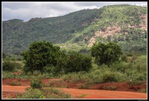 Kenya-0561