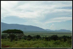 Kenya-0687
