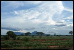 Kenya-0796