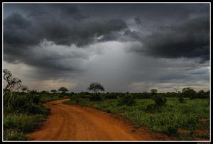 Kenya-0858