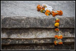 India (110)