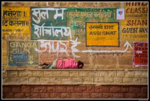India (42)